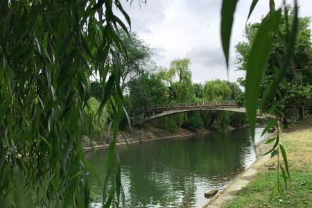 Bega Nehri